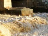 В Сестрорецке состоится запуск станции мониторинга поверхностных вод