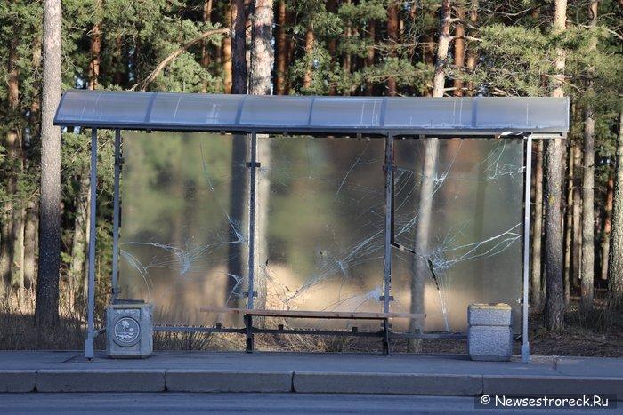 Стеклянные остановки возвращаются в Петербург
