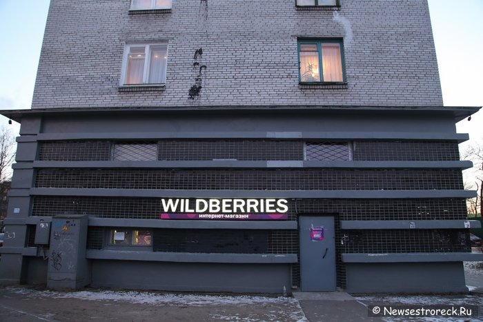 841c14bb06ce Интернет-магазин Wildberries в Сестрорецке » Сайт города Сестрорецка