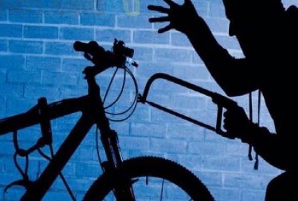 В Сестрорецке раскрыта серия краж велосипедов