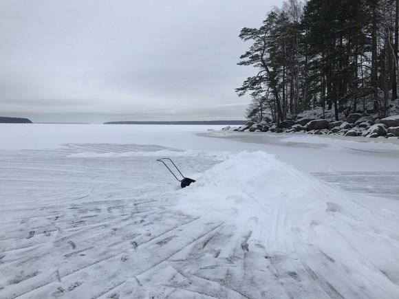 На Финском заливе начали строить «дома» для нерп