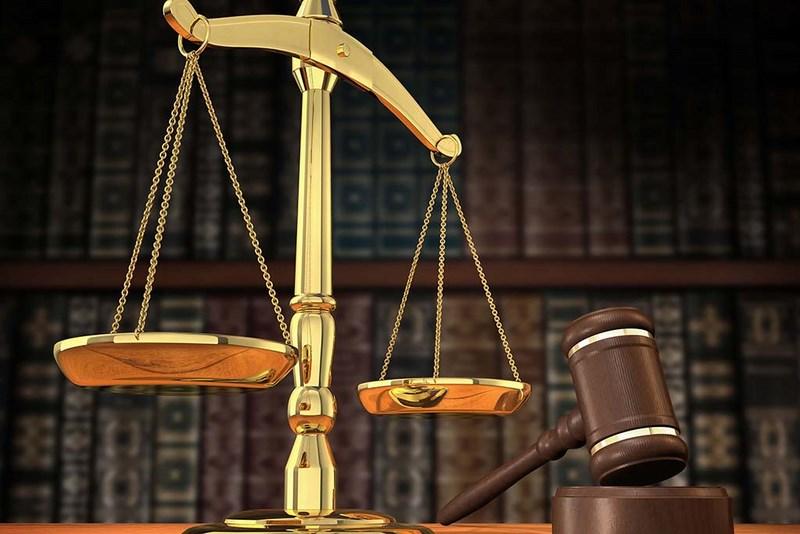 Сестрорецкий районный суд осудил лже-минера