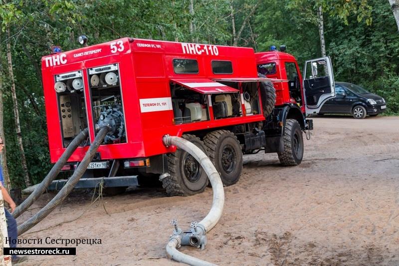 Под Сестрорецком горел лес на площади 1 гектар