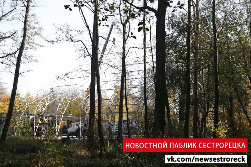 В парке «Дубки» в Сестрорецке незаконно строят навес над кортом