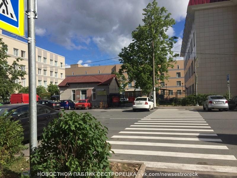 Пешеходный переход возле поликлиники в Сестрорецке оборудовали по поручению Беглова