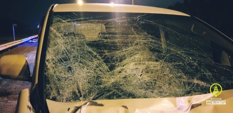 Иномарка сбила насмерть двух подростков в Сестрорецке