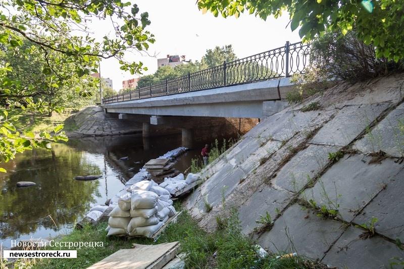 У Литейного моста в Сестрорецке утонула женщина
