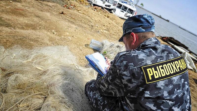 Жителя Сестрорецка оштрафовали на 55 690 руб. за незаконный вылов рыбы